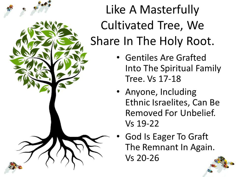 Like A Masterfully Cultivated Tree, We Share In The Holy Root.