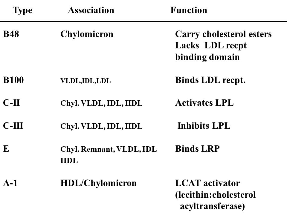 Type Association Function