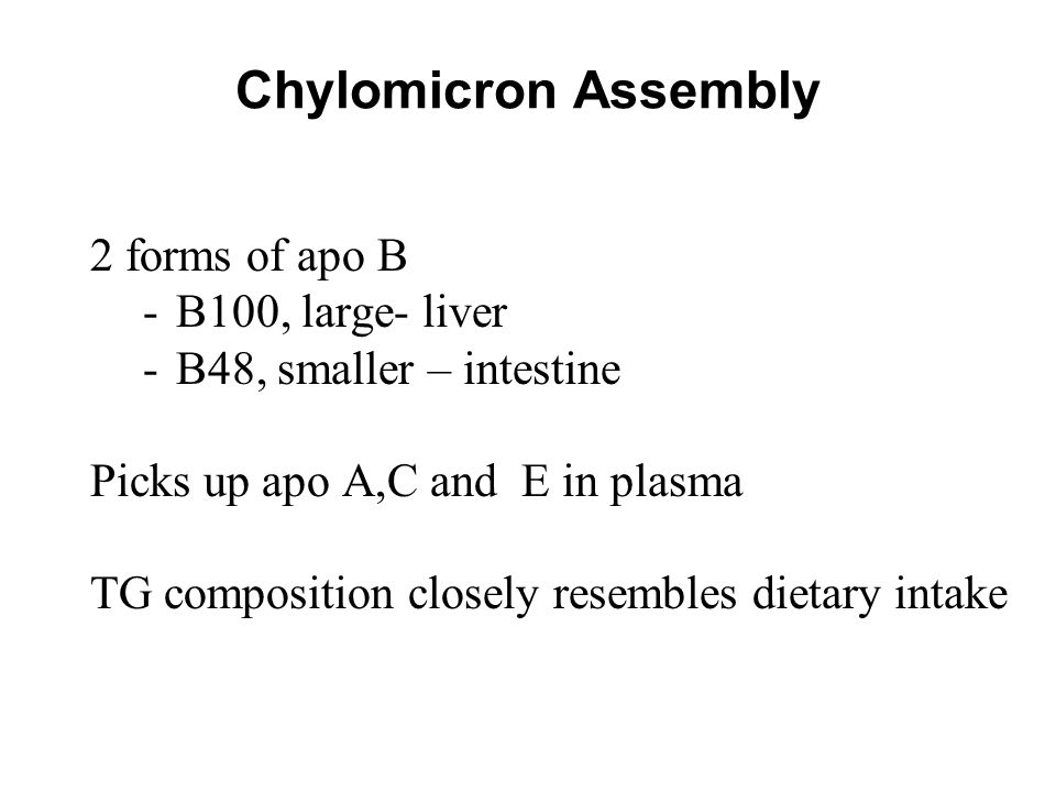 Chylomicron Assembly 2 forms of apo B B100, large- liver