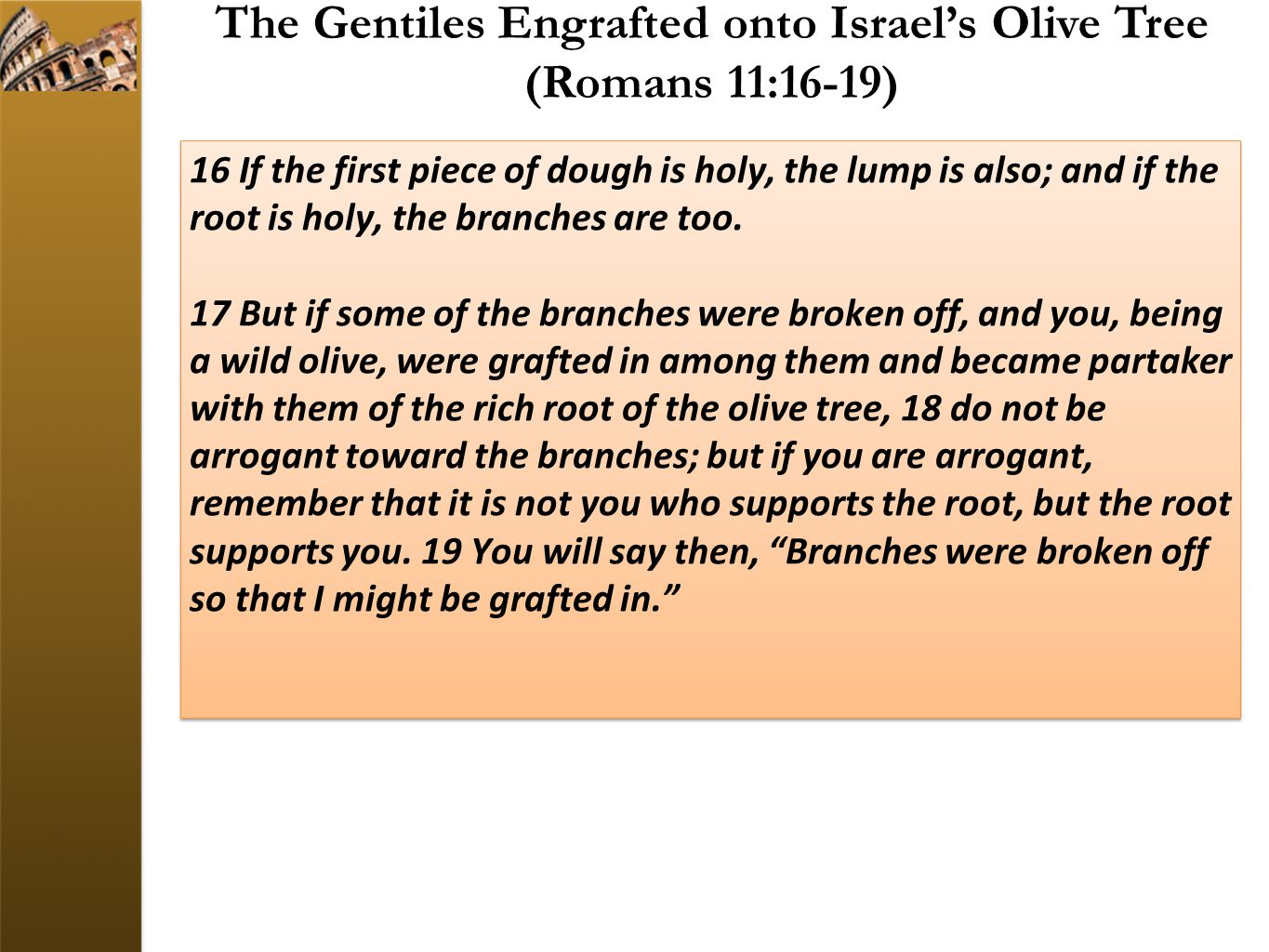 The Gentiles Engrafted onto Israel's Olive Tree (Romans 11:16-19)