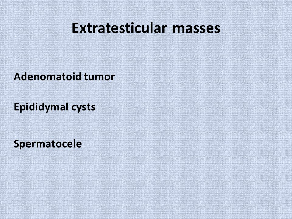 Extratesticular masses