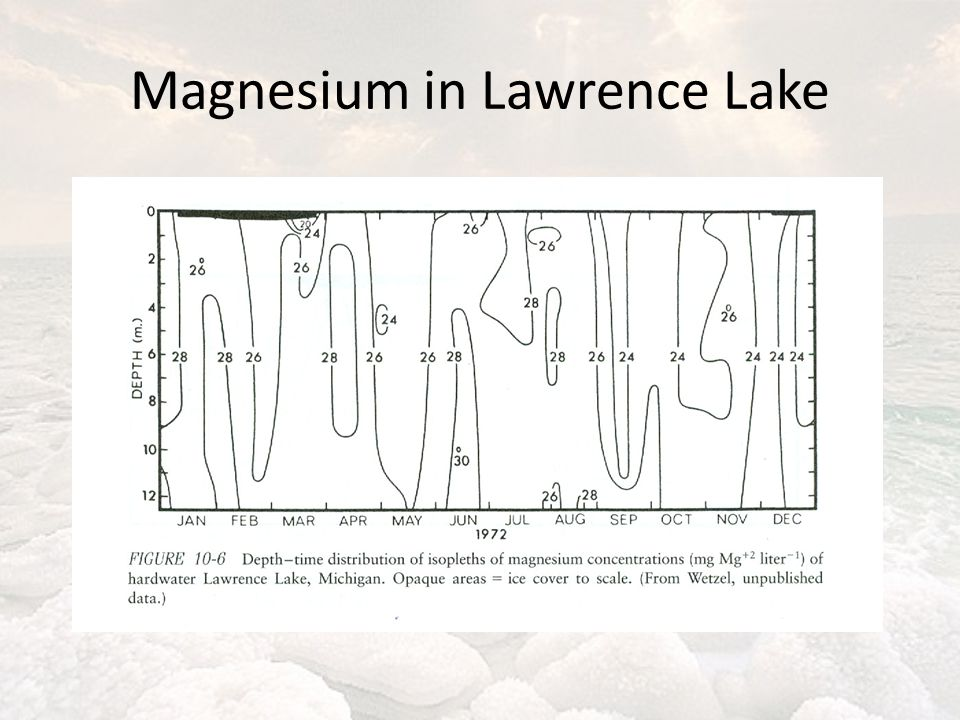 Magnesium in Lawrence Lake