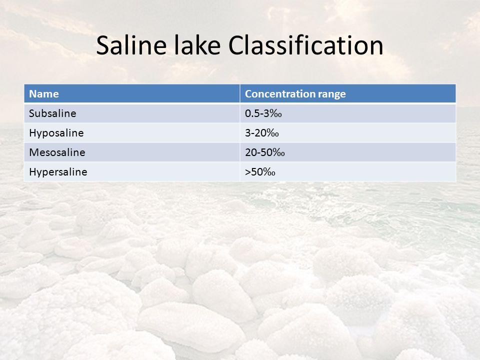 Saline lake Classification