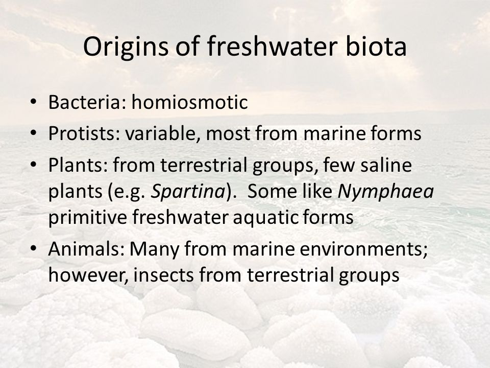 Origins of freshwater biota