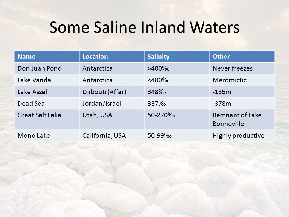 Some Saline Inland Waters