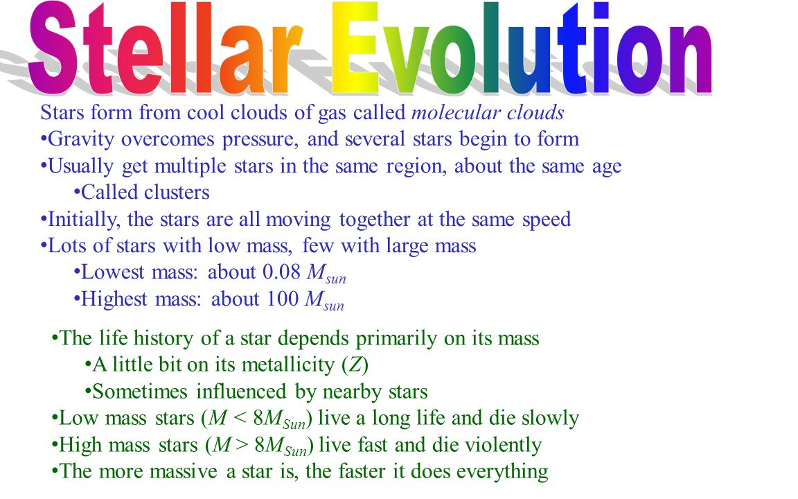 Stellar Evolution Stars form from cool clouds of gas called molecular clouds. Gravity overcomes pressure, and several stars begin to form.
