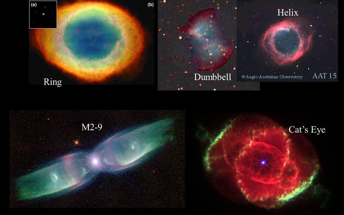 Helix Dumbbell Ring M2-9 Cat's Eye