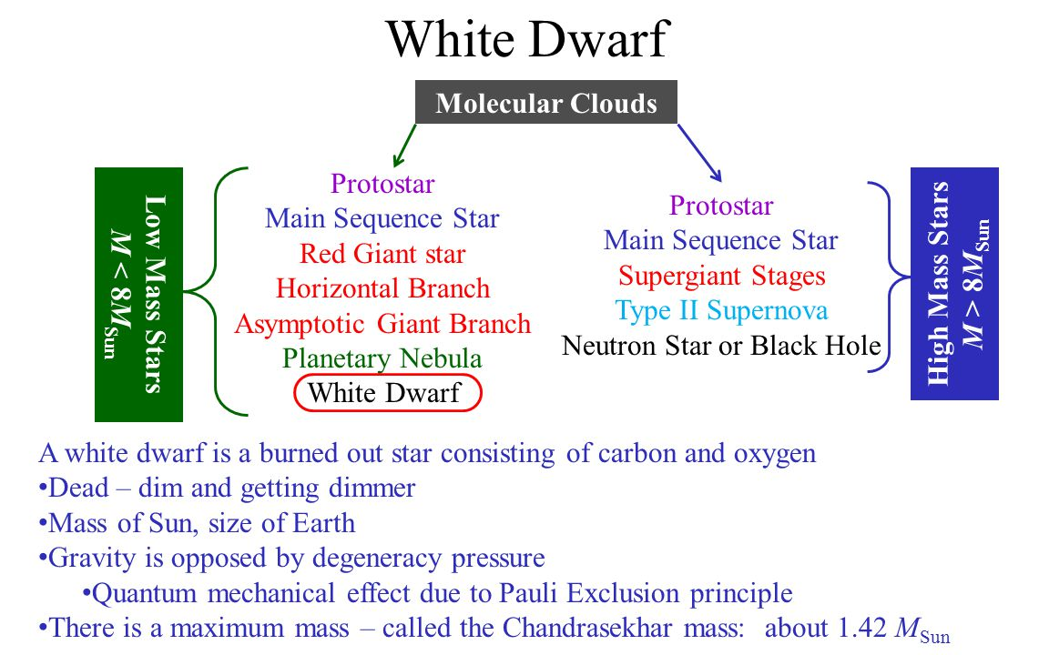 White Dwarf Molecular Clouds Protostar High Mass Stars Low Mass Stars