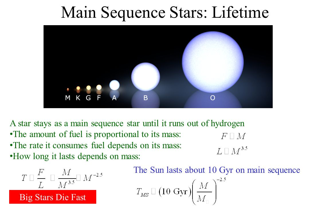 Main Sequence Stars: Lifetime