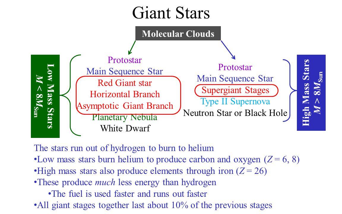 Giant Stars Molecular Clouds Protostar High Mass Stars Low Mass Stars