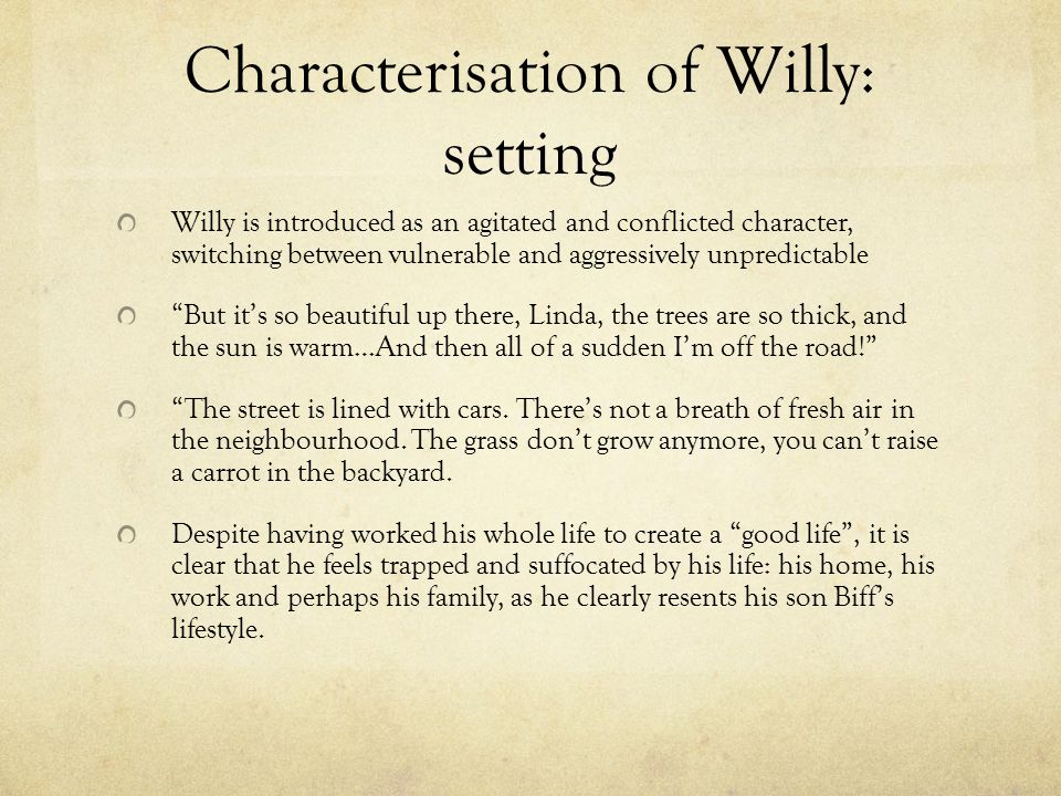 Characterisation of Willy: setting