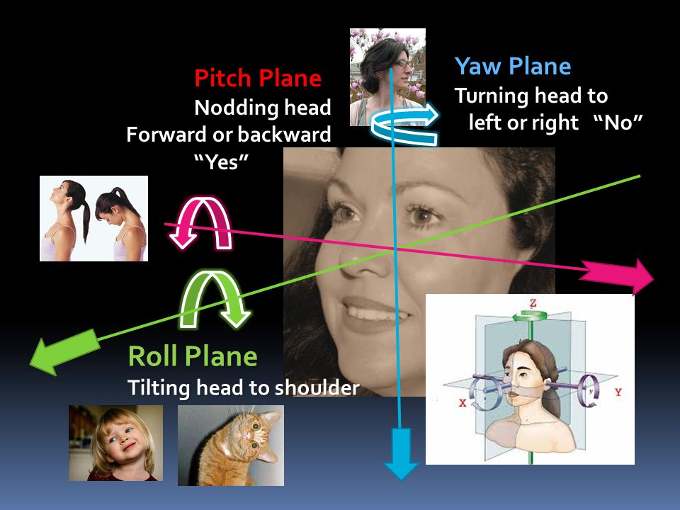Roll Plane Yaw Plane Pitch Plane Turning head to Nodding head