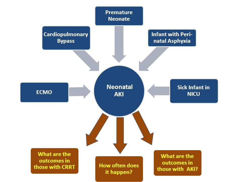 Neonatal AKI Premature Neonate Cardiopulmonary Bypass