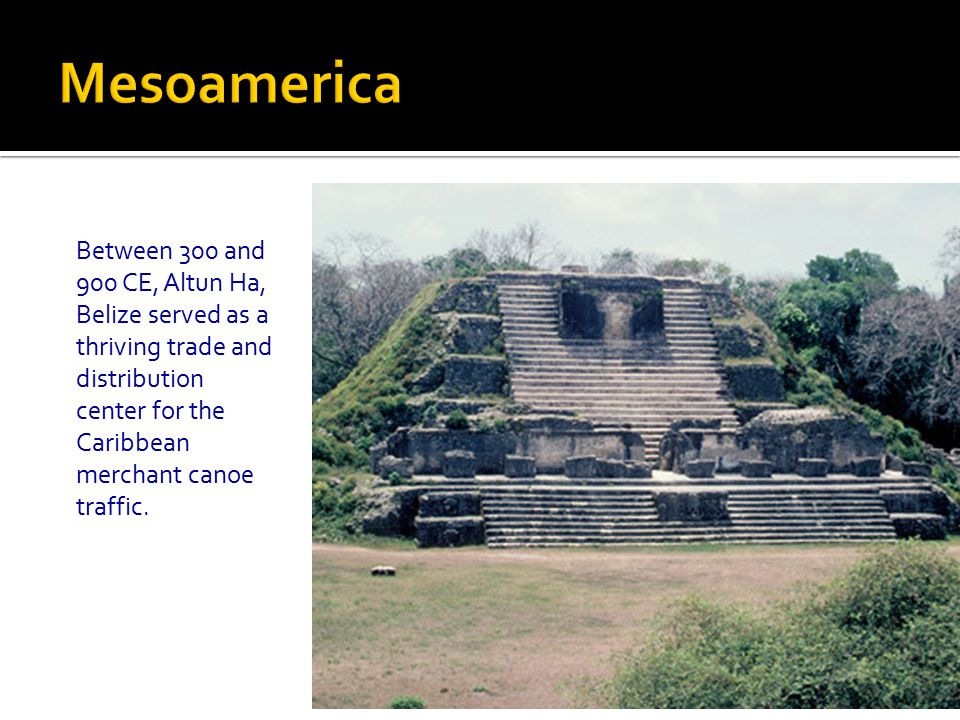 Mesoamerica Between 300 and 900 CE, Altun Ha, Belize served as a thriving trade and distribution center for the Caribbean merchant canoe traffic.