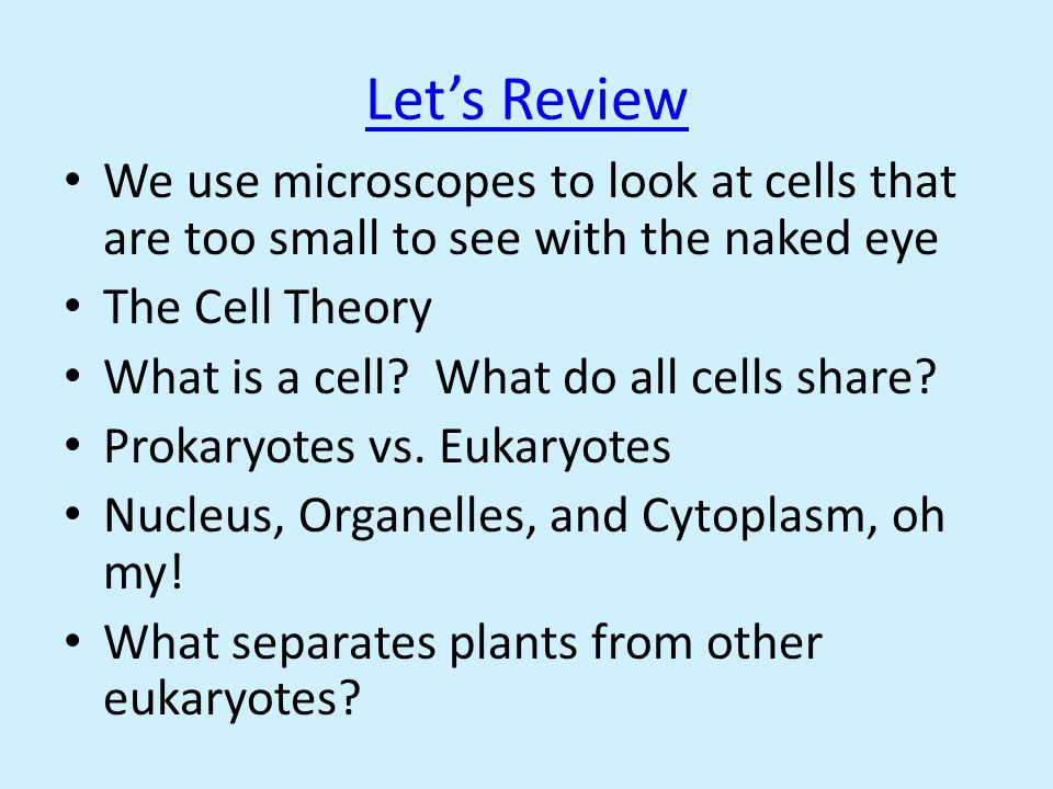 Let's Review We use microscopes to look at cells that are too small to see with the naked eye. The Cell Theory.
