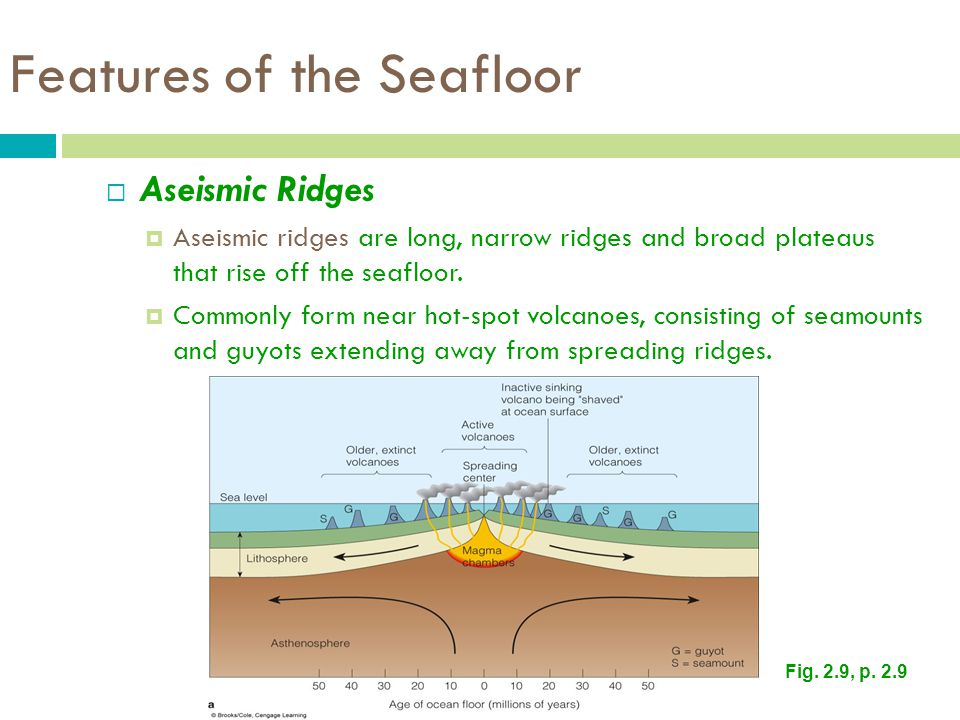 Features of the Seafloor
