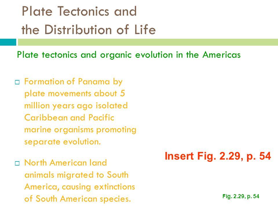 Plate Tectonics and the Distribution of Life