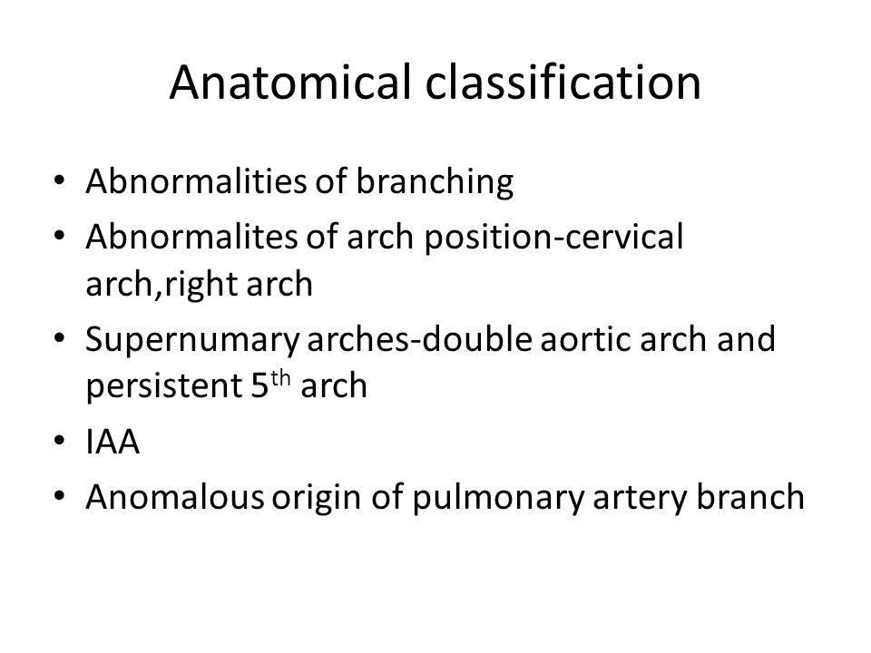 Anatomical classification