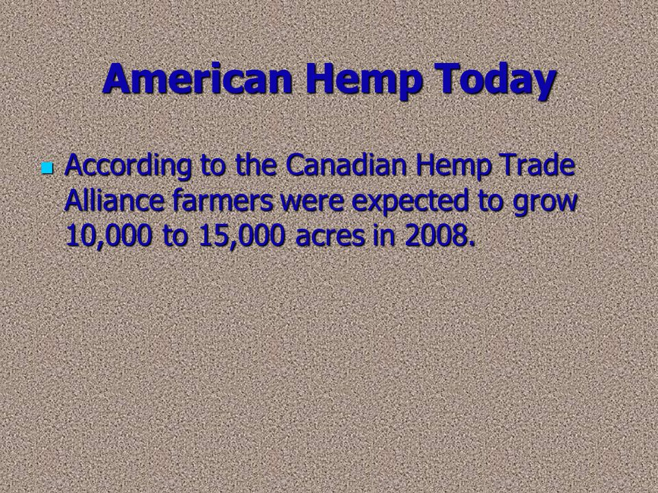 American Hemp Today According to the Canadian Hemp Trade Alliance farmers were expected to grow 10,000 to 15,000 acres in 2008.