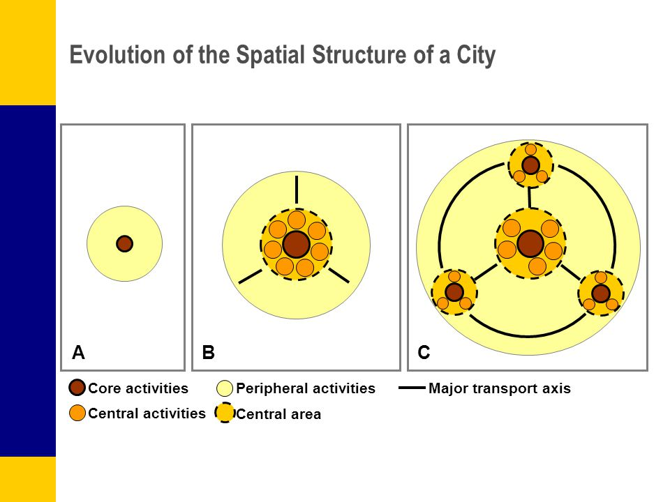 Evolution of the Spatial Structure of a City