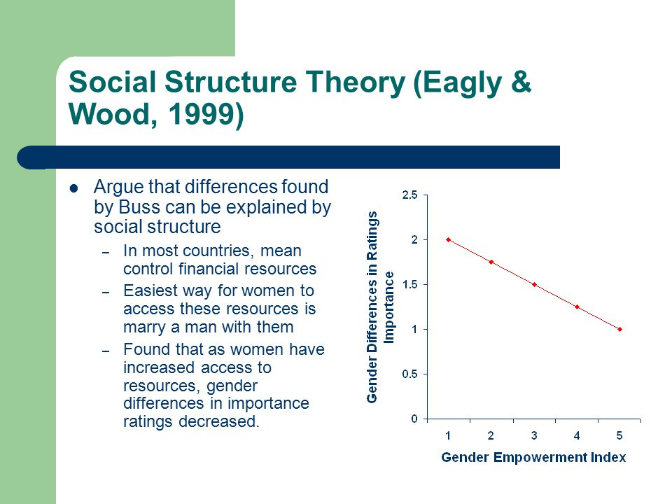 Social Structure Theory (Eagly & Wood, 1999)