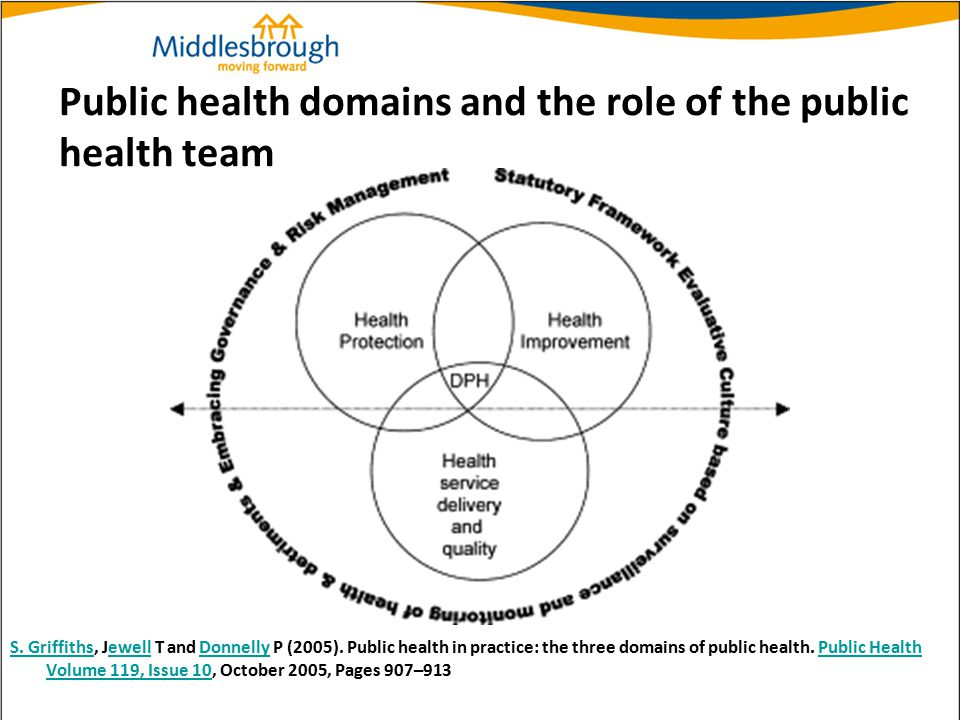 Public health domains and the role of the public health team