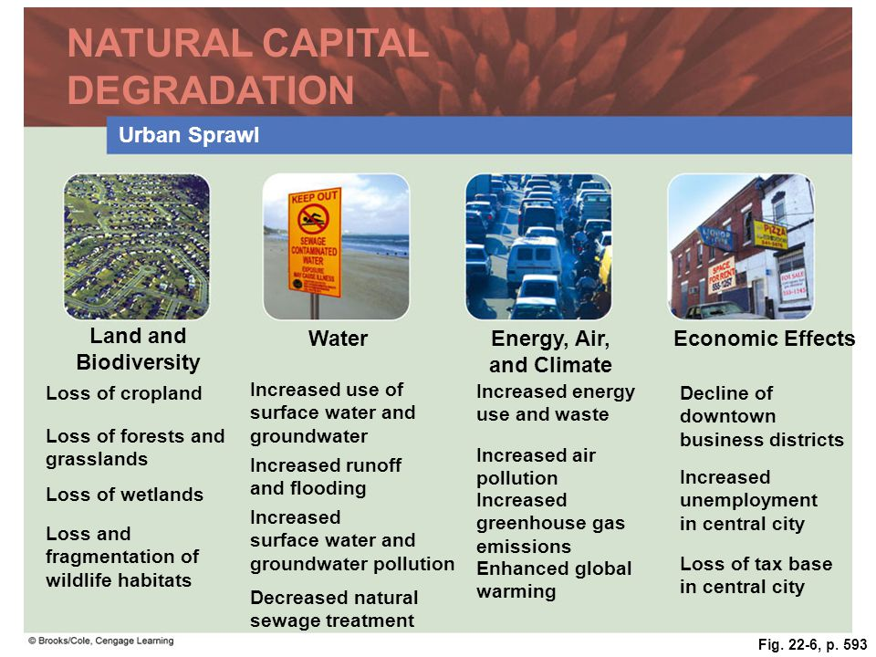 NATURAL CAPITAL DEGRADATION