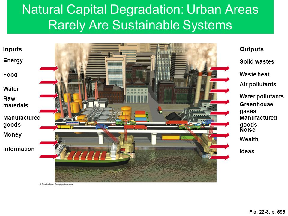 Natural Capital Degradation: Urban Areas Rarely Are Sustainable Systems