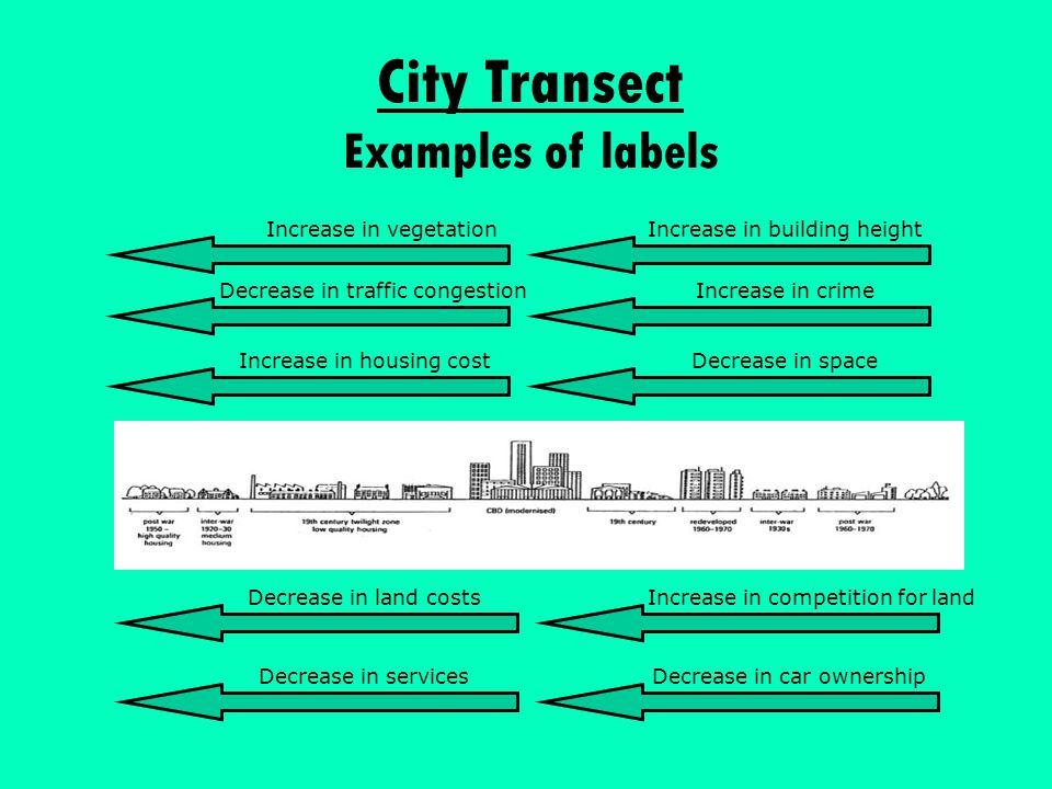 City Transect Examples of labels Increase in vegetation