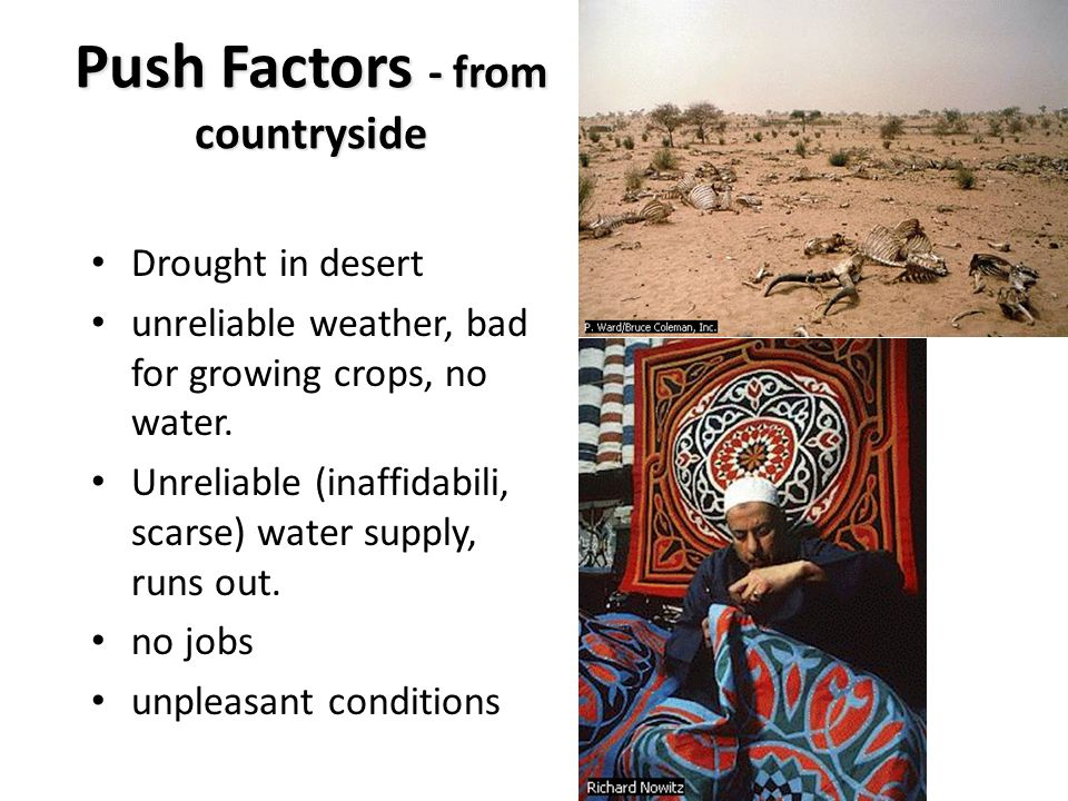 Push Factors - from countryside