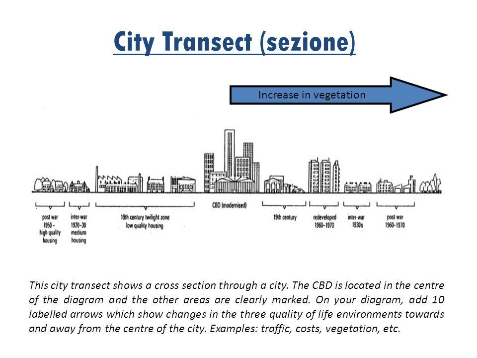 City Transect (sezione)