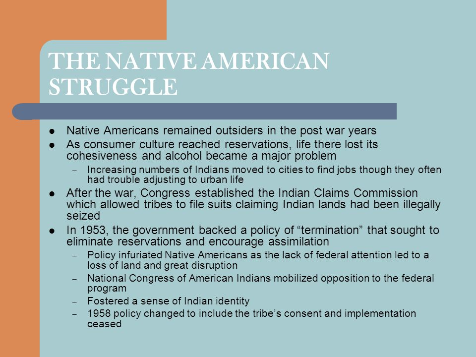 THE NATIVE AMERICAN STRUGGLE