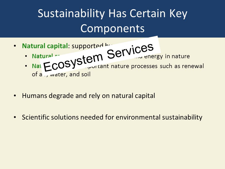 Sustainability Has Certain Key Components