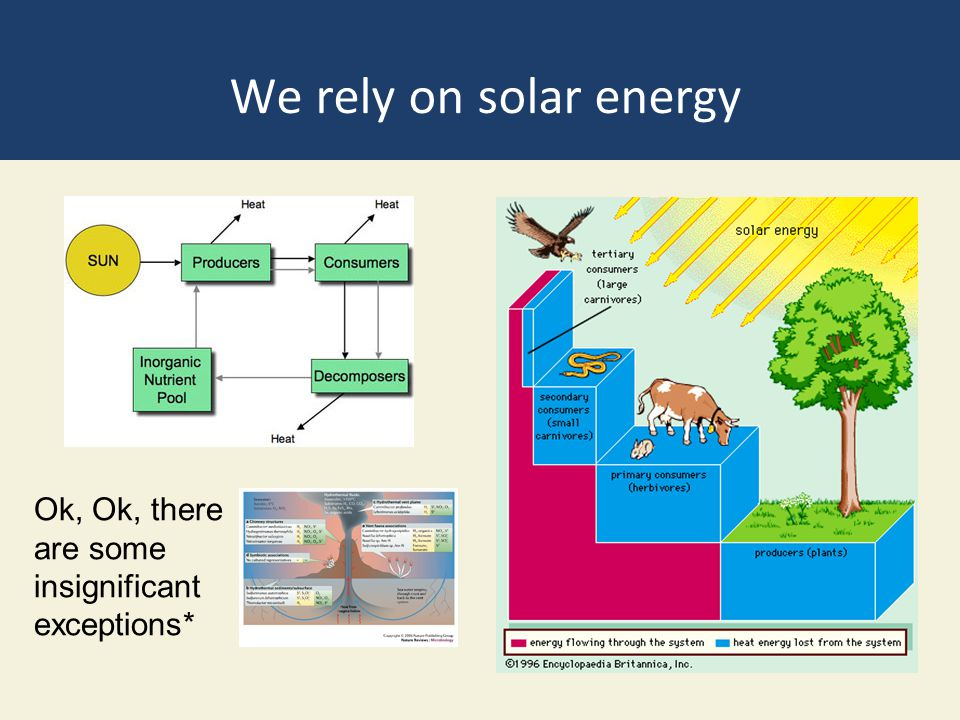 We rely on solar energy Ok, Ok, there are some insignificant exceptions*