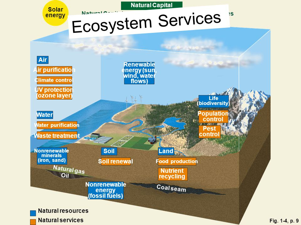 Ecosystem Services Natural Capital Solar energy