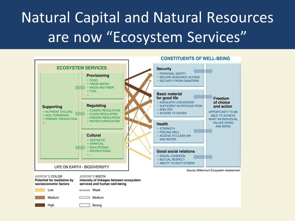 Natural Capital and Natural Resources are now Ecosystem Services