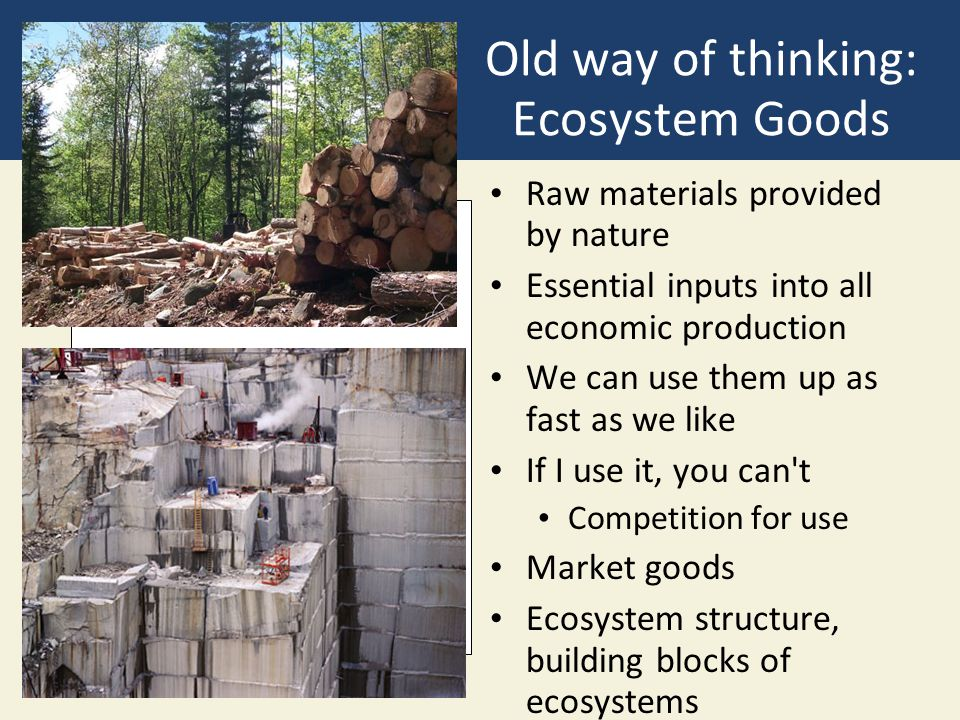 Old way of thinking: Ecosystem Goods