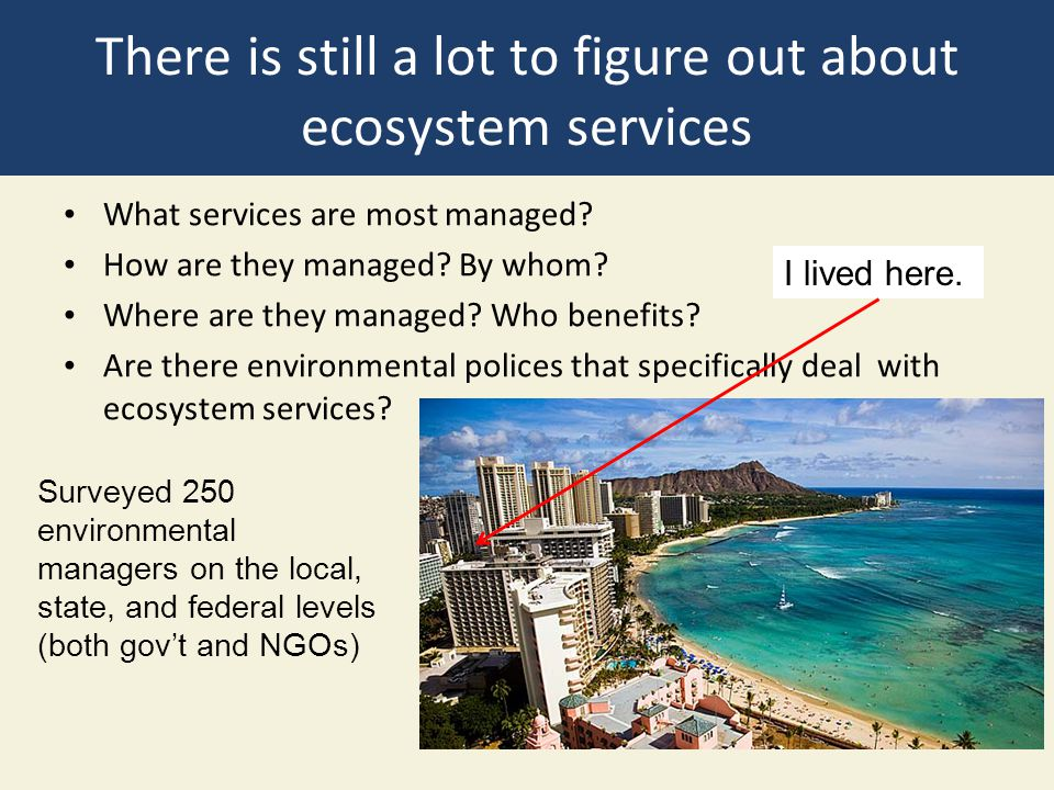 There is still a lot to figure out about ecosystem services