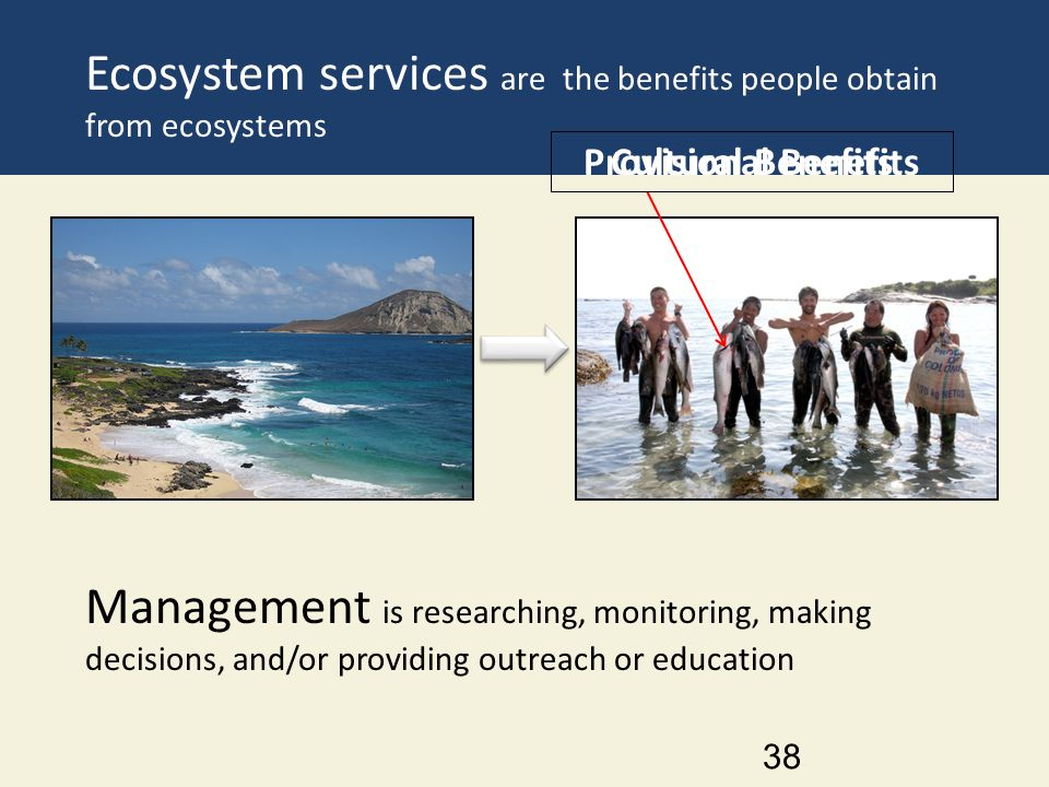 Ecosystem services are the benefits people obtain from ecosystems