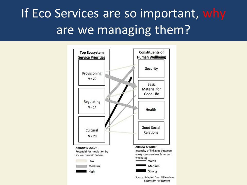 If Eco Services are so important, why are we managing them