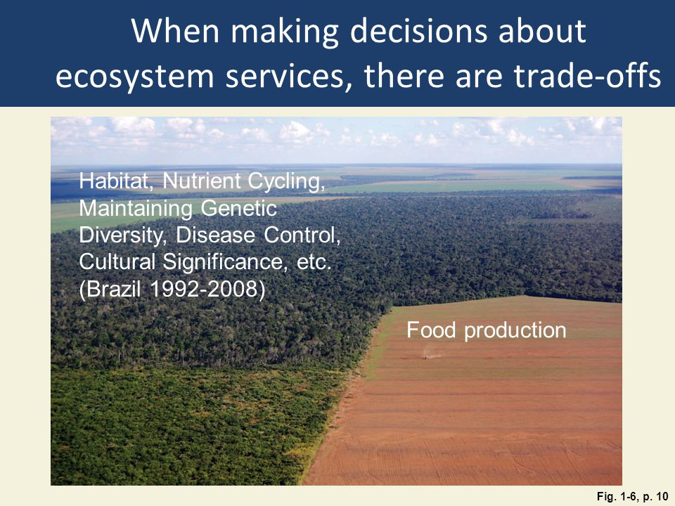 When making decisions about ecosystem services, there are trade-offs