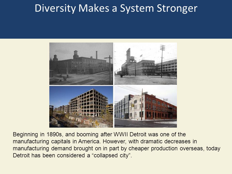 Diversity Makes a System Stronger