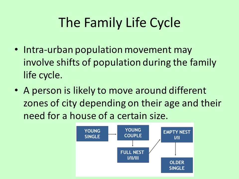 The Family Life Cycle Intra-urban population movement may involve shifts of population during the family life cycle.