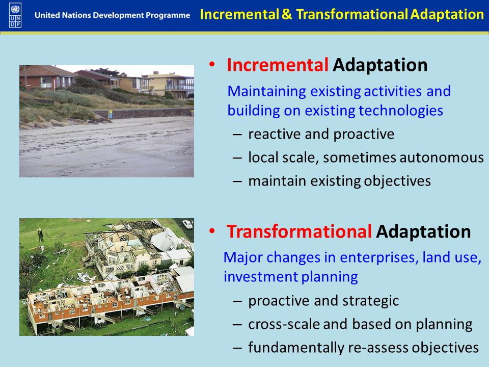 Incremental & Transformational Adaptation