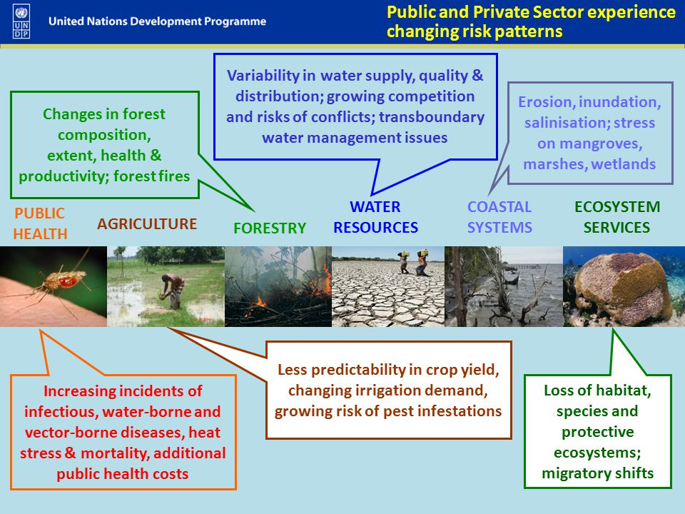 Public and Private Sector experience changing risk patterns