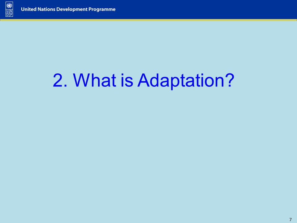 2. What is Adaptation