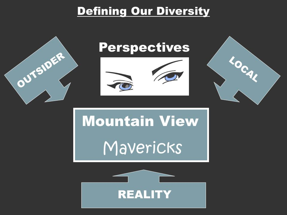 Mavericks Mountain View Perspectives Defining Our Diversity REALITY