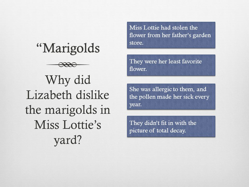 Why did Lizabeth dislike the marigolds in Miss Lottie's yard