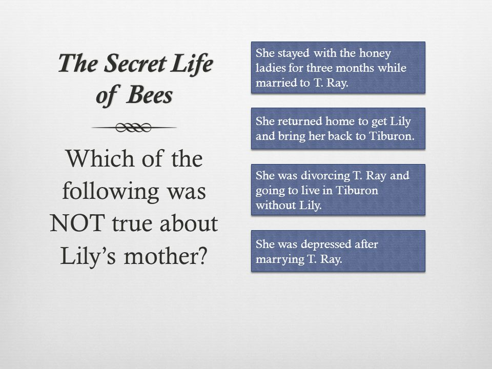 Which of the following was NOT true about Lily's mother