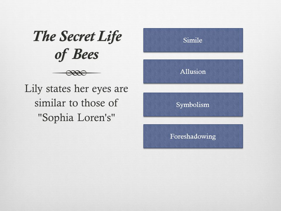 Lily states her eyes are similar to those of Sophia Loren s